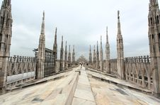 Free The Image From The Rooftop Of Duomo Royalty Free Stock Photo - 5597575