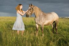 Free Summer Evening On A Pasture Stock Photography - 5598932