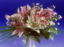 Free Flowers In Vase Royalty Free Stock Images - 5598979