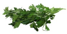 Free Parsley Royalty Free Stock Image - 5599416