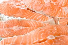 Free Fresh Salmon Stock Image - 5599871