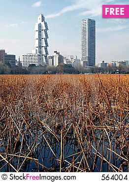 Free The City On The Pond (Ueno Par Stock Images - 564004