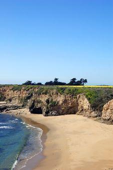 Free Springtime Coastal Meadow Royalty Free Stock Photography - 561867