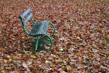 Free Autumnal Bench Stock Image - 561931