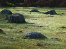 Free Stones On The Grass Royalty Free Stock Image - 563706