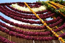 Free Strings Of Flowers, Jodhpur, Strings Of Flowers, Rajastan Royalty Free Stock Photo - 563845