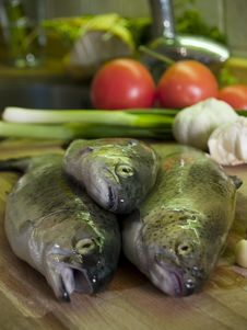 Free Fresh Trouts And Vegetables Stock Images - 564074