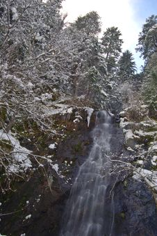 Free Snowy Waterfall Stock Photography - 565002