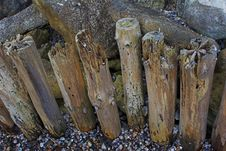 Free Seawashed Wooden Posts Stock Photo - 566070