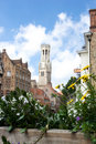 Free The Belfry And The Cloth Hall Royalty Free Stock Photography - 5602057