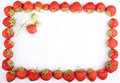 Free Strawberry Frame Royalty Free Stock Image - 5604616