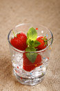 Free Strawberry, Mint, Ice Cubes And Water In Wet Glass Royalty Free Stock Images - 5605969