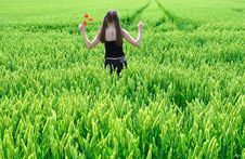 Free Girl In Field Stock Photos - 5600123