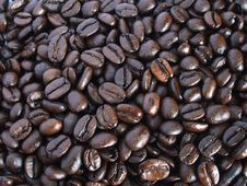 Free Coffee Beans Royalty Free Stock Photos - 5601398