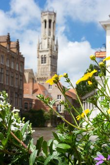 The Belfry And The Cloth Hall With Flowers Stock Photography