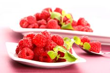 Free Raspberries Stock Photography - 5602992