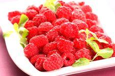 Free Raspberries Stock Image - 5603131