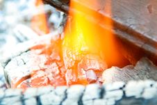 Free Flames And Ashes Stock Image - 5603241