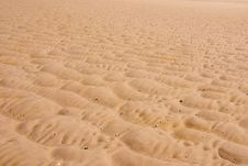 Free Sand Pattern Royalty Free Stock Photo - 5603335