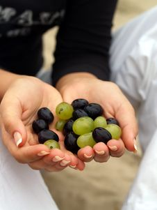Free Grapes In The Nands Stock Photo - 5604070