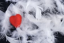 Free Feathers And Heart Stock Photo - 5605250