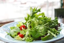 Free Green Leaf Salad With Cherry Tomato Stock Photography - 5605992
