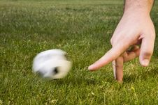 Free Soccer Field Stock Images - 5606034