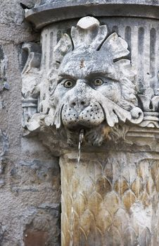 Free Lion Fountain In Dubrovnik Royalty Free Stock Photos - 5606338