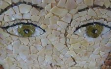 Free Mosaic Portrait Stock Images - 56042914