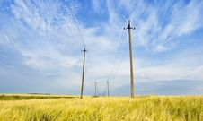 Free Field And Powerlines Royalty Free Stock Images - 5612509