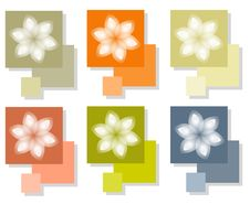 Free White Flowers On Squares Royalty Free Stock Photography - 5613277