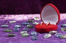 Free Wedding Rings Royalty Free Stock Photos - 5614888