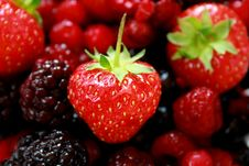 Free Strawberry Fruits Royalty Free Stock Photo - 5615185