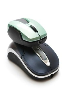 Big Mouse Carry Small Mouse Stock Images