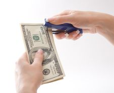 Free Female Stapling Us Dollars, Isolated Royalty Free Stock Photography - 5619717