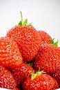 Free Strawberries Stock Photo - 5624540