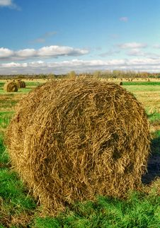 Intorted Roll Of Hay Stock Image