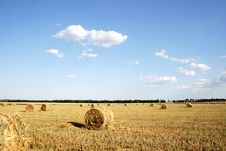 Free Field With Hay After Harvesting Stock Photos - 5621343