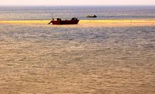 Free Golden Color Seashore Royalty Free Stock Photo - 5622425