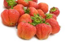 Free Fresh Strawberry Royalty Free Stock Photos - 5623028