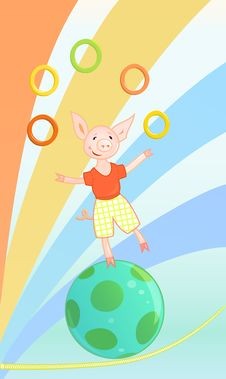 Funny Circus Pig Stock Image