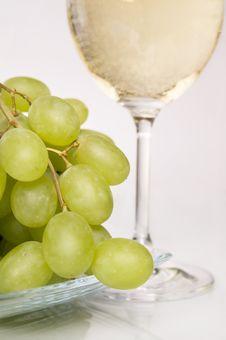 White Vine. Royalty Free Stock Photos