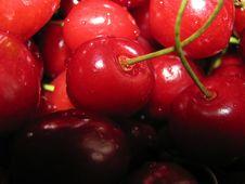 Free Cherry Royalty Free Stock Photos - 5625188