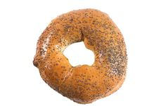 Free Bagel With Poppy Seeds Royalty Free Stock Images - 5625629