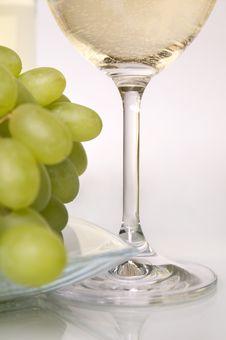White Vine. Royalty Free Stock Photo