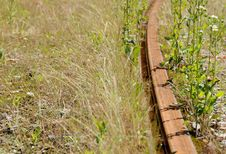 Free Old Rusty Railway Royalty Free Stock Photo - 5627735