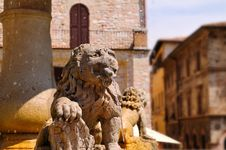Free Assisi Fountain Royalty Free Stock Photography - 5629077