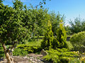 Free Attractive English Style Formal Garden Stock Photos - 56220723