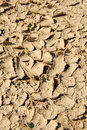 Free Cracked Earth Texture Stock Images - 5637494