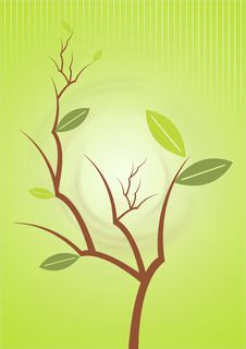 Free Green Plant Background Royalty Free Stock Photos - 5630338